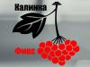 КАЛИНКА ФИНКС, сервисный центр Волгоград